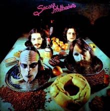 Capa do disco dos Secos & Molhados.