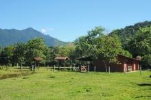 Vista geral do terreno, com algumas das casas de apoio. Fotografia feita pela Profa. Rejan Rodrigues Guedes-Bruni.