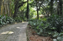 Entrada do terreno da Estrada Santa Marinha.